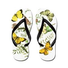 French Butterflies Flip Flops