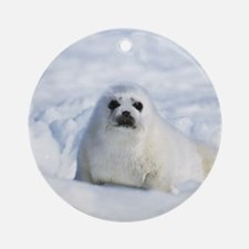 Harp Seal Keepsake (Round)