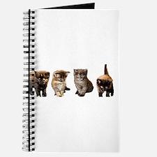 Kitten Journal