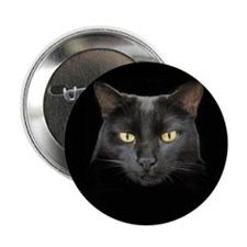 "Dangerously Beautiful Black 2.25"" Button (10 pack)"