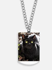 Black Cat Watercolor Dog Tags