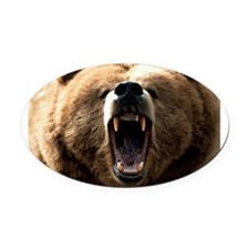 grizzly bear Oval Car Magnet
