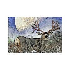 Trophy mule deer buck Rectangle Magnet