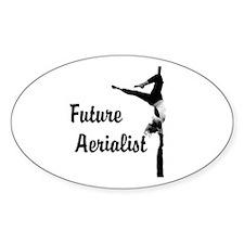Future Aerialist Design Decal