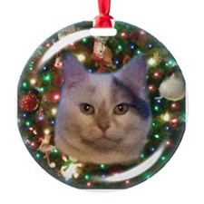 Penny White Gray Cat Ornament Ornament