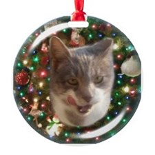 Mama Tabby Grey White Cat Ornament Ornament