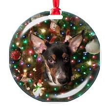 Taco Dog Ornament Ornament