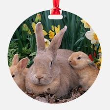 Daffodil Bunnies Ornament