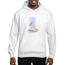 American Kestrel Hoodie