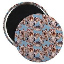 """Cute Yorkies 2.25"""" Magnet (10 pack)"""