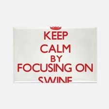 Keep Calm by focusing on Swine Magnets