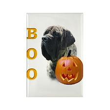 Mastiff(Brn) Boo Rectangle Magnet