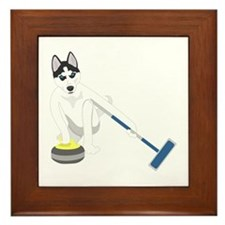 Siberian Husky Curling Framed Tile