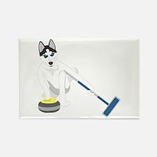 Siberian Husky Curling Rectangle Magnet