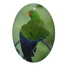 hokuIMG_0017.jpg Ornament (Oval)