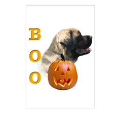Mastiff(flf) Boo Postcards (Package of 8)
