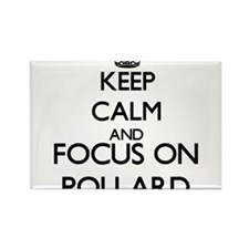 Keep calm and Focus on Pollard Magnets