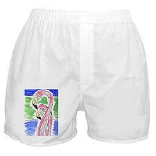 Flamingos Two Boxer Shorts