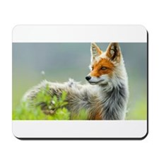 Red Fox Mousepad