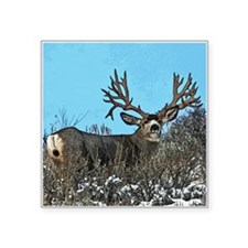 "Trophy mule deer buck b Square Sticker 3"" x 3"""