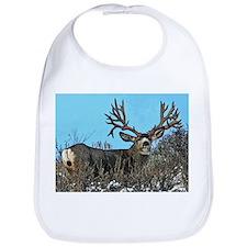 Trophy mule deer buck b Bib
