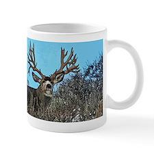 Trophy mule deer buck b Mug