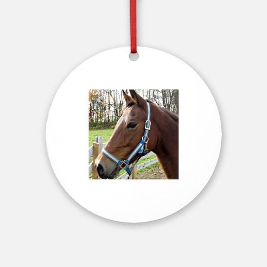 Morgan Horse in Field Ornament (Round)