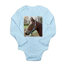 Morgan Horse in Field Body Suit