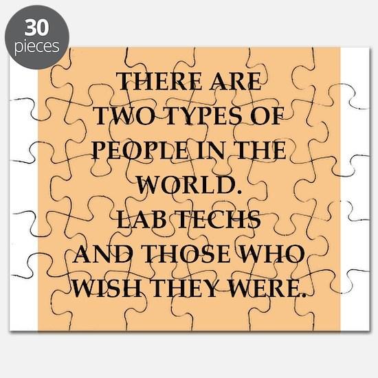 LABTECHS Puzzle