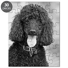 Black Poodle Puzzle