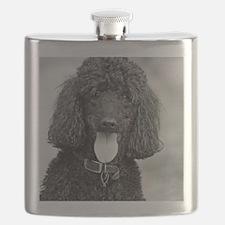 Black Poodle Flask