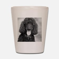 Black Poodle Shot Glass
