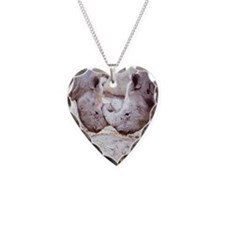 00-but-02.jpg Necklace Heart Charm