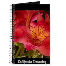 California Fire Lilies Journal
