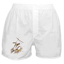 Unique Birds Boxer Shorts