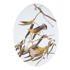 Audubon Warbler Image Ornament (Oval)