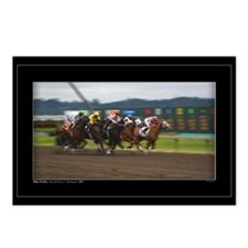 Racehorses on the Run Postcards (Package of 8)