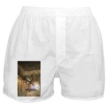 The dragon in the castle Boxer Shorts