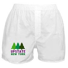 UPSTATE NEW YORK Boxer Shorts