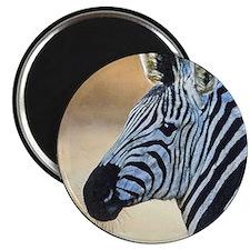 00-ornR06.jpg Magnets