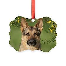 Keeva Forsythie Ornament