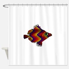 Green Eyed Discus Fish in Purple, G Shower Curtain