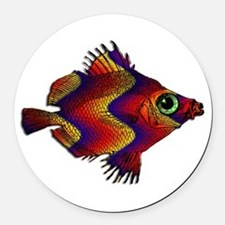 Green Eyed Discus Fish in Purple, Round Car Magnet