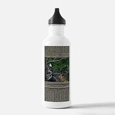 Old Cabin Window Bald Water Bottle
