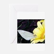 Butterfly on Yellow Flower Greeting Greeting Cards