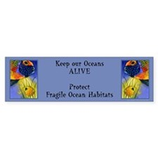 Beautiful Ocean Fish Bumper Bumper Sticker