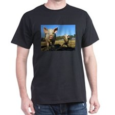 pigs2 T-Shirt