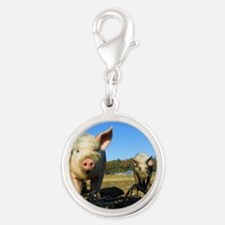 pigs2 Charms
