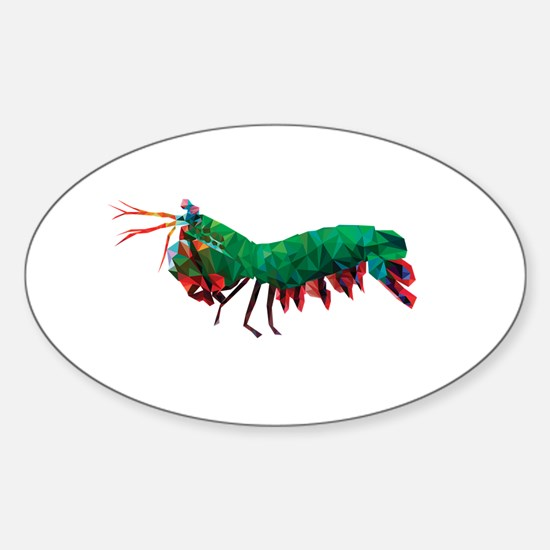 Geometric Abstract Peacock Mantis Shrimp Decal