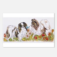 Cute Papillon Postcards (Package of 8)